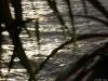 2014-04-04-16-51-41_500D_IMG_0679