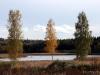 NORDLAND_2008_0082